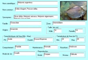 metynnis-argenteus-descriptif