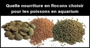 Quelle nourriture en flocons choisir pour les poissons en aquarium
