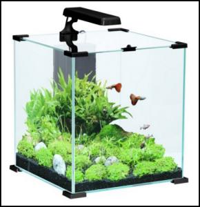 aquarium-nano-wave-laguna