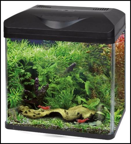 comment r aliser un paysage avec un aquarium nano de 12 l. Black Bedroom Furniture Sets. Home Design Ideas
