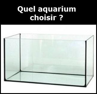 Aquarium le choix du débutant