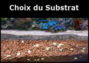 Que diable est «Substrat» vous demandez-vous