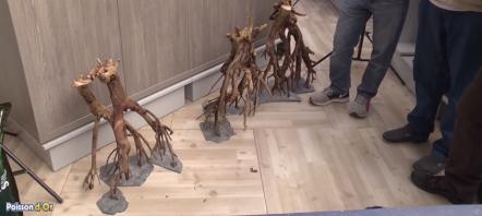 Comment installer du bois flotté en aquascaping