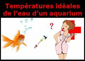 La température idéale d'un aquarium d'eau douce…