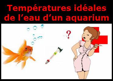 la temp rature id ale d un aquarium d eau douce apprendre aquariophilie. Black Bedroom Furniture Sets. Home Design Ideas