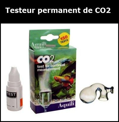 Permanent De Co2, En Verre