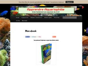 Mon ebook