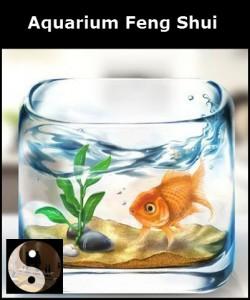 Un aquarium Feng shui, des ondes positives pour votre domicile