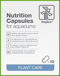 nutrition-capsules