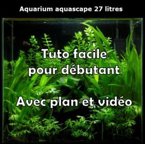 aquarium-aquascape-27-litres