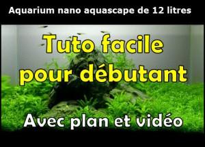 Comment réaliser un paysage avec un aquarium nano de 12 litres
