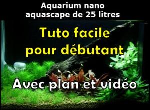 Comment réaliser un paysage aquascape avec un aquarium nano