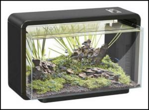 aquarium-superfishwave-25