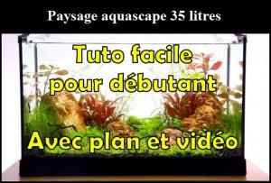 paysage-aquascape-35-litres