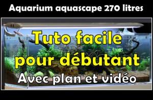Réaliser un paysage aquascape avec un aquarium 270 litres