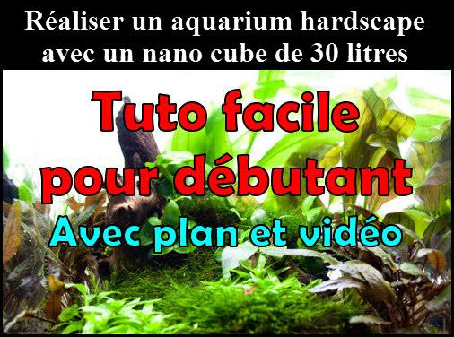 Comment réaliser un paysage hardscape avec un aquarium nano cube de 30 litres