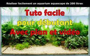 Comment faire un paysage aquascape avec un aquarium 200 L..