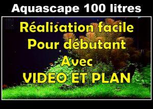 Comment faire un paysage aquascape facilement 100 litres