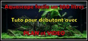 annonce-aquarium-300-litres-52-10-jours (4)