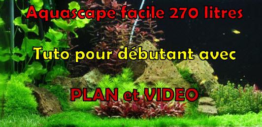 Comment réaliser un paysage aquascape avec un aquarium de 270 litres