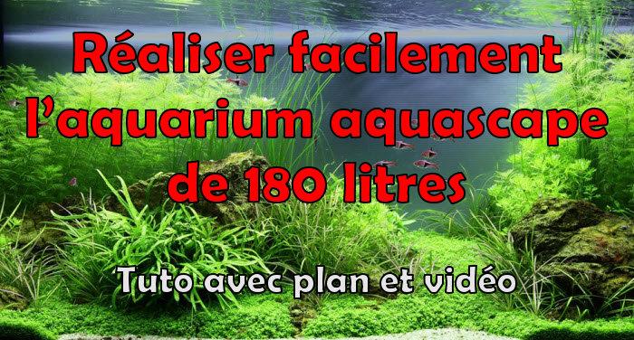 Comment réaliser un paysage aquascape avec un aquarium de 180 litres