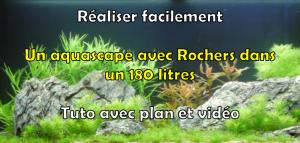 Réaliser un aquascape avec rocher dans un aquarium 180 litres