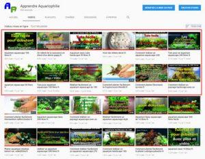 Les 12 vidéos d'aquariophilie les plus vues sur Youtube